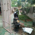 ಚಿಕ್ಕಪ್ಪನಿಂದಲೇ ಮನೆಗೆ ಪೆಟ್ರೋಲ್ ಬಾಂಬ್ ಎಸೆತ- ದ್ವಿಚಕ್ರವಾಹನ ಭಸ್ಮ