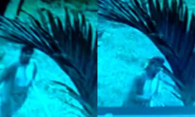Woman CCTV Camera